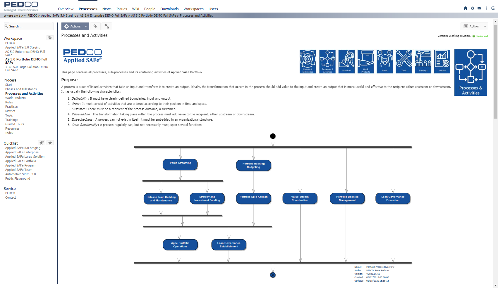 Portfolio Processes and Activities